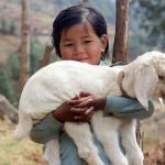ネパール(カトマンズ)物価|現地の生活価格の調査