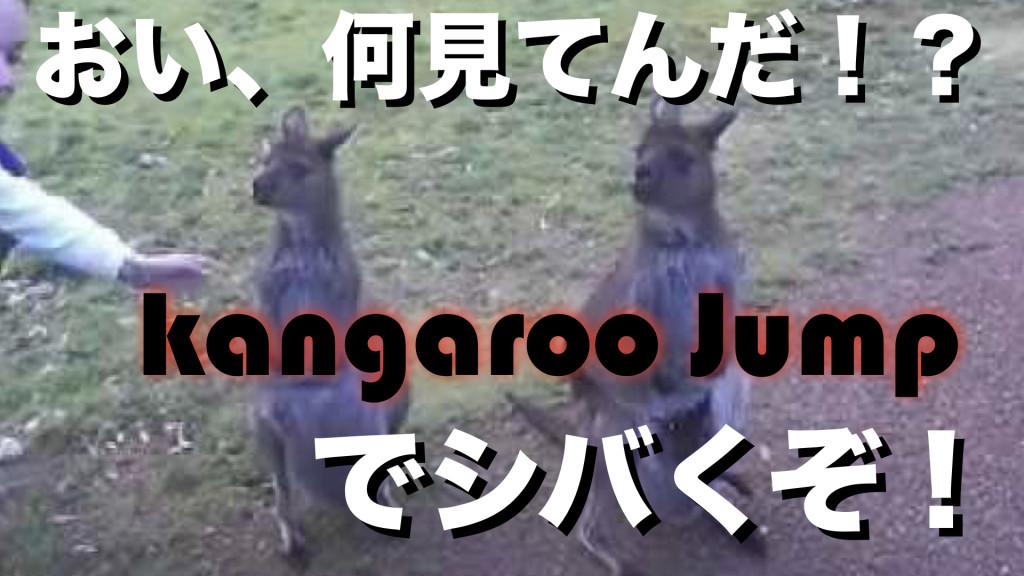 カンガルー.002