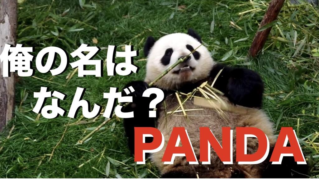 パンダ.001