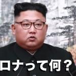 北朝鮮(金正恩)が4月末に海外から盗んだとされる情報